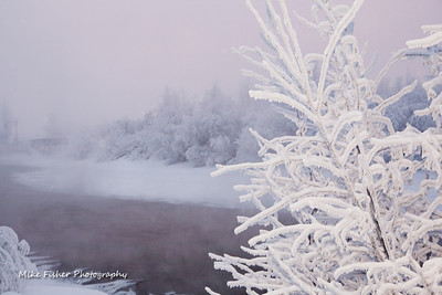 Mike Fisher's Weekly Photo Project - Week #1 (photo-3).  Taken along side the Chena River, near the Carlson Center on Jan. 1. It was about 4:00pm and near -40. Taken with a Canon 5D, 24-7-mm, 1/25, f7.1, iso 100, with flash. edit