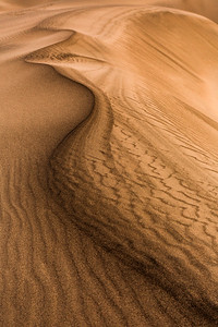 Sandpressions