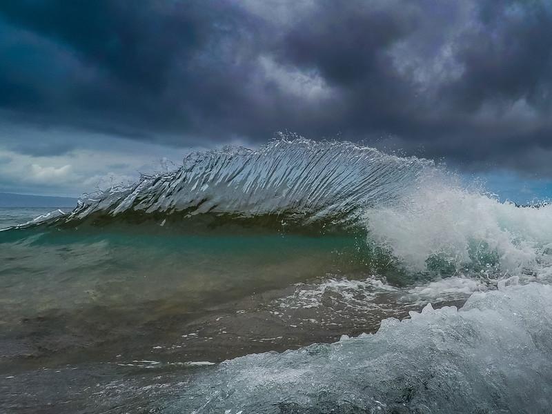 Maui Mohawk