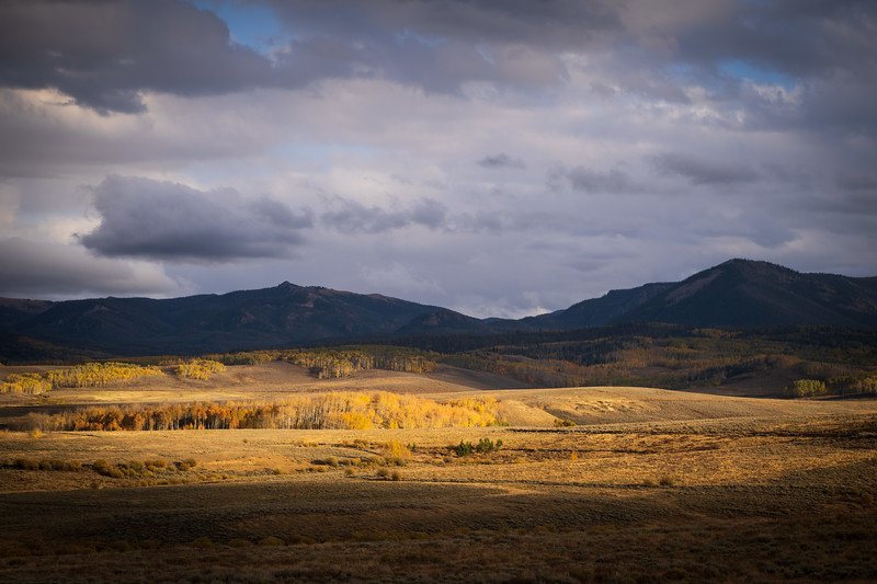 Northern Colorado Fall Color