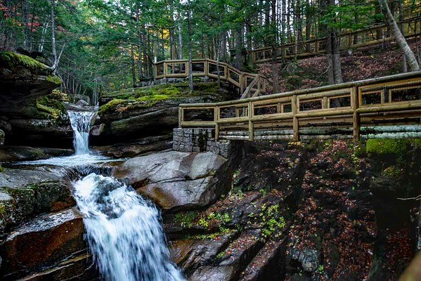 New Hampshire Fluyme 1