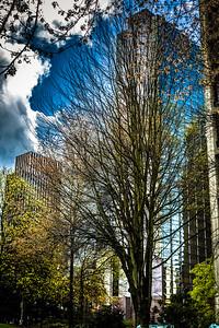 Seattle, I