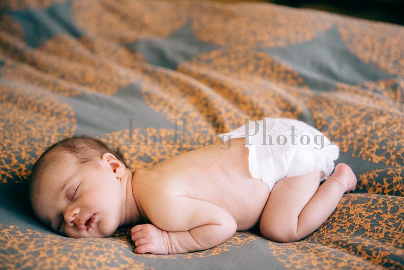 CourtneyLindbergPhotography_012115_0138