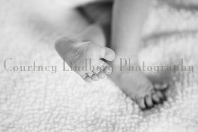 (C)CourtneyLindbergPhotography_112816_0039