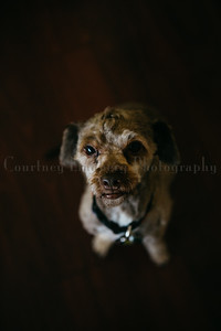 (C)CourtneyLindbergPhotography_091815_0029