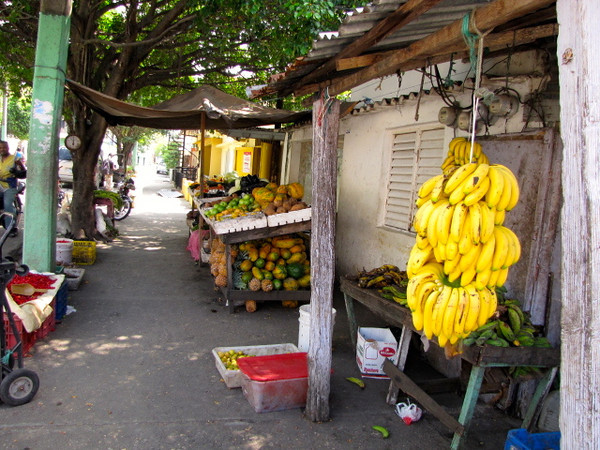 We did a nice walking tour through town to see how the locals live. Here's a look at a sidewalk fruit stand that are common around town... fresh fruit... ummm! :-)