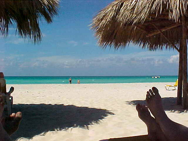"""This was our view for about 90% of the week at Sandals in Cuba. :-)  Ok, maybe not that much but we sure did love spending time at the beach under these """"palm tree cabanas""""!"""