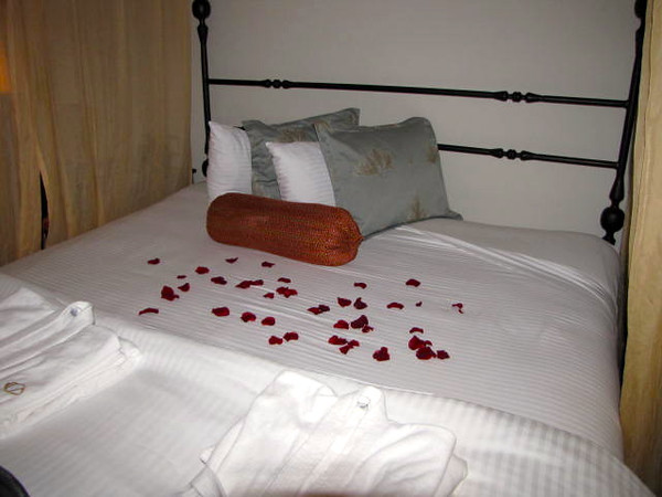 "When returning to our room after dinner & an evening ""on the town"" on night # 1 we had rose petals all over our bed... sweet!! :-)"