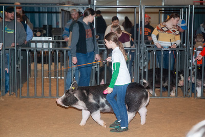 20200125_all_indian_swine-18