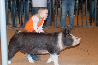 20200125_all_indian_swine-23