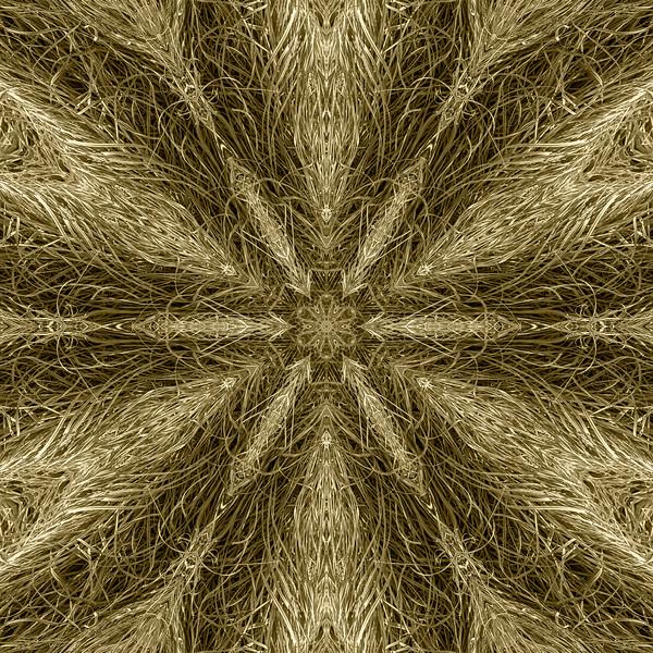 Xeriscapist Fiber Grass