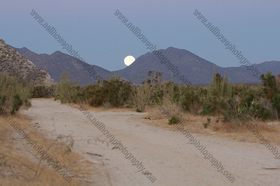 Moonset over the arroyo