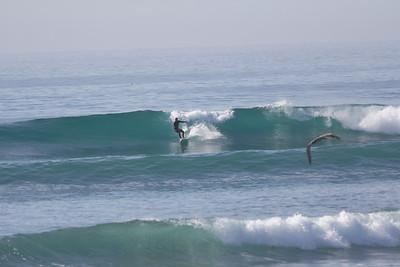 Surfing Scorpion Bay
