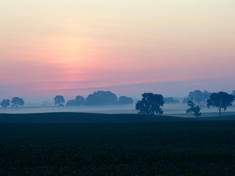 Sunrise mist between scorching hot days.