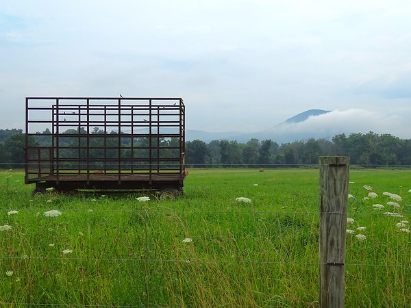 Hay wagon in pasture as mist rises from Mt. Parnell after a rain.