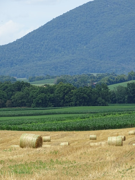 Hay bales in front of Mt. Parnell