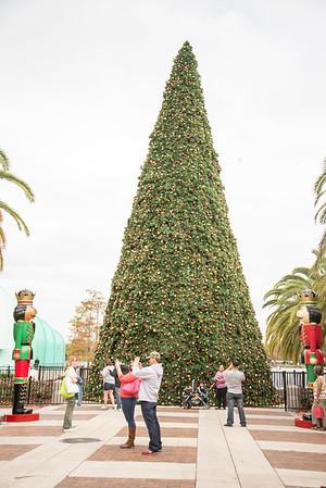 Orlando Christmas Parade 12-13