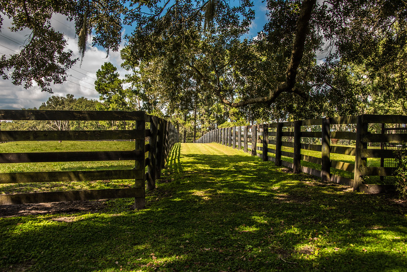 Ocala Horse Country