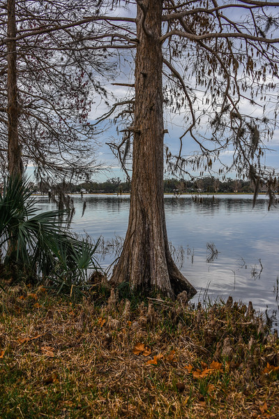 Florida Parks and Preserves