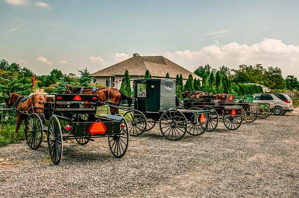 Amish & Mennonite Communities