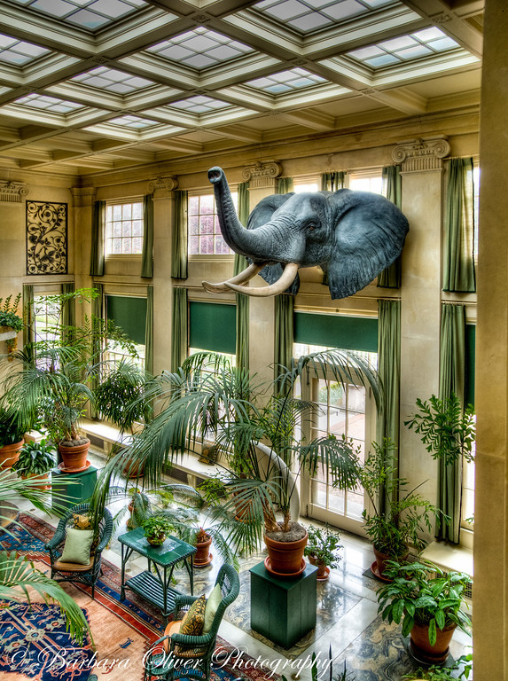 The SOlarium and Trophy Room in Eastman House