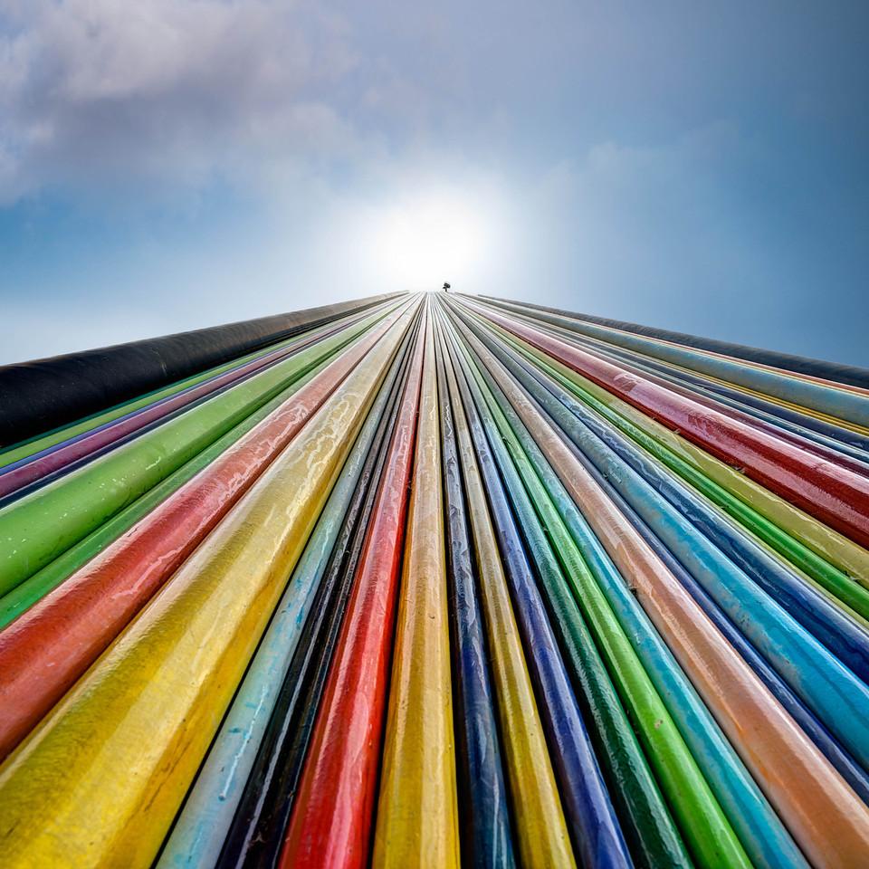True Colors Shining Through