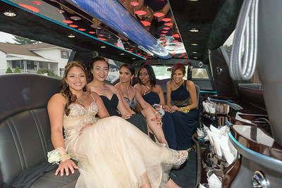 HighschoolPromJune 25, 2014223