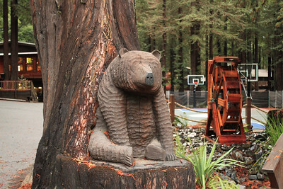 Alliance Redwoods Conference Ground - Occidental, CA, USA