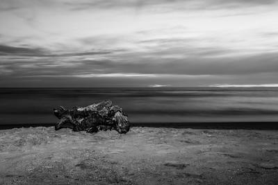 Sunset. Driftwood. Waddell Beach. Big Basin State Park, CA, USA
