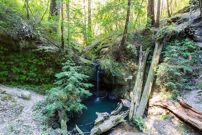 Sempervirens Falls & Coast Redwood (Sequoia sempervirens). Big Basin State Park - Boulder Creek, CA, USA
