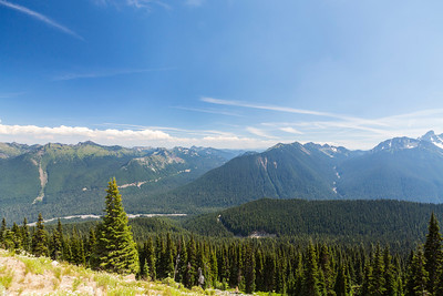 Sunrise Lake Area. Mount Rainier National Park - Washington, USA