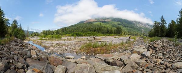 Panorama. Carbon River. Mount Rainier National Park - Washington, USA