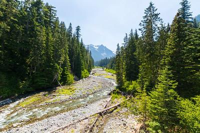 Fryingpan Creek. Mount Rainier National Park - Washington, USA