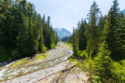 Fryingpan Creek. Mount Rainier National Park - Washington, USA