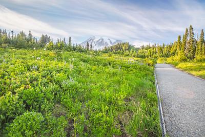HDR Composition. Paradise. Mount Rainier National Park - Washington, USA