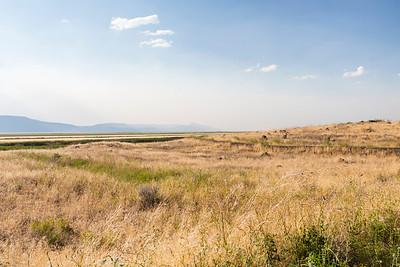West Wildlife Overlook (Tule Lake National Wildlife Refuge). Tulelake, CA, USA