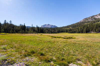Upper Meadow. Lassen Volcanic National Park - California, USA
