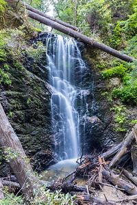 Berry Creek Falls. Berry Creek Falls Trail. Big Basin State Park, CA, USA