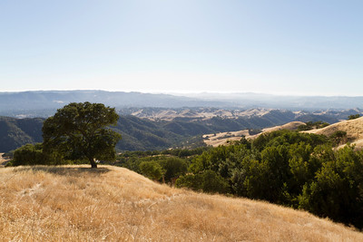 Mount Diablo State Park - California, USA