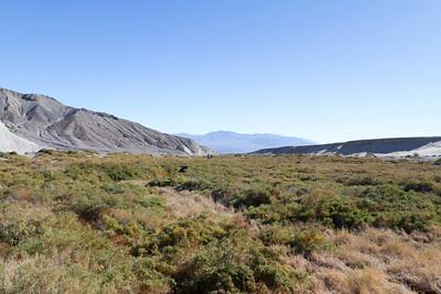Salt Creek. Death Valley National Park