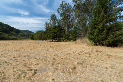 Bort Meadow. Anthony Chabot Regional Park - Oakland, CA, USA