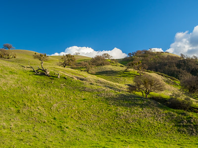 East Shore Trail. Del Valle Regional Park - Livermore, CA, USA