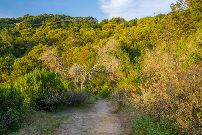 HDR Composition. Sunset. East Bay MUD Park at Briones Overlook Staging Area - Orinda, CA, USA