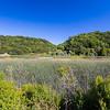 Lake Chabot. Honker Bay Trail. Lake Chabot Regional Park - Castro Valley, CA, USA