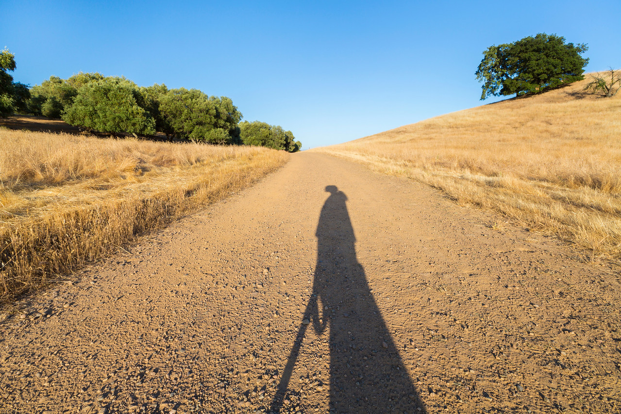 Sunset. Shadow. Pleasanton Ridge Regional Park - Sunol, CA, USA