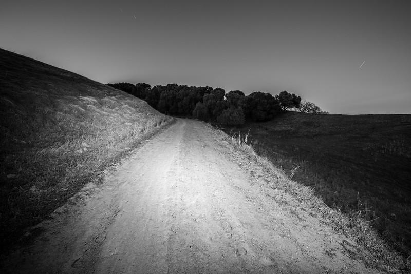 Dusk. Olive Grove Trail - Pleasanton Ridge Regional Park - Sunol, CA, USA