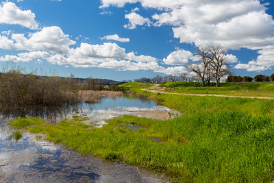 Levee Trail. Shadow Cliffs Regional Park - Pleasanton, CA, USA