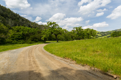 Ohlone Road. Sunol Regional Wilderness - Sunol, CA, USA