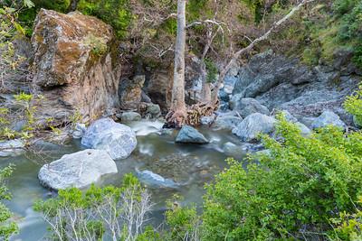Alameda Creek. Ohlone Road. Sunol Regional Wilderness - Sunol, CA, USA