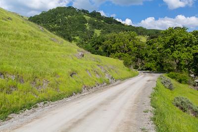 Ohlone Road. Sunol Regional Wilderness - Sunol, CA, USA
